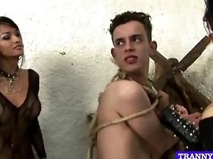 Shemale trio playing with male slave